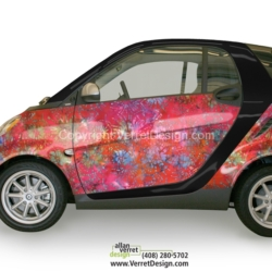 Single-SmartCar-concepts